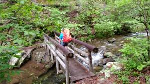 bridge over rapids, mountain stream